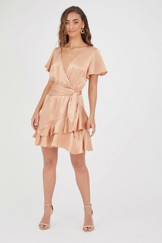 Ventosa Dress Ladies Dress Colour is Blush