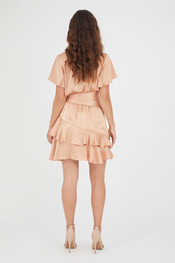 Ventosa Dress Ladies Dress Colour is Blush