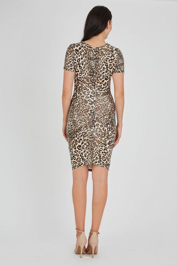 Cards Dress Ladies Dress Colour is Brown Leopard Print