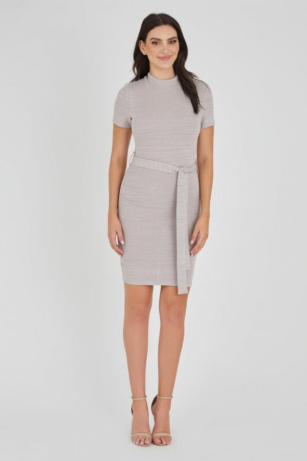 Tycoon Dress Ladies Dress Colour is Taupe