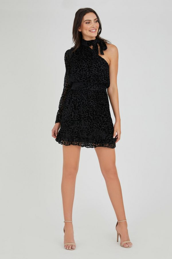 Wild Card Dress Ladies Dress Colour is Black